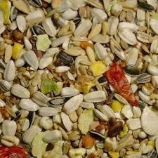Slaats Papegaai premium 2,5 kg