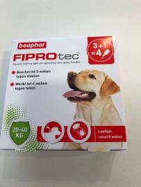 FIPROTec hond 20 - 40 kg