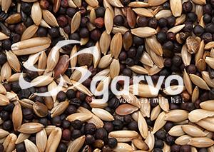 Garvo Kanarie zoet standaard 1 kg