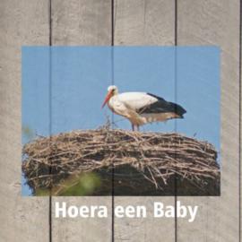 Hoera een Baby