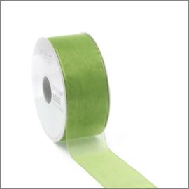 Organza lint - spring green