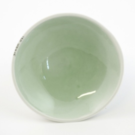 Colour plate - XS - Green 071