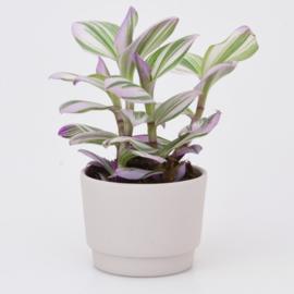 Mini flowerpot - XS - Pink