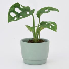 Mini flowerpot - XS - Green