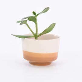 Dip   Plant   M   Nude 041