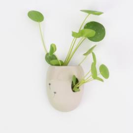 Wall flower vase | L | Brown
