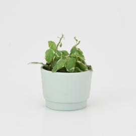 Mini flowerpot - XXS - Mint