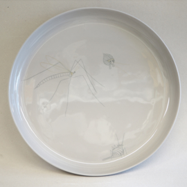 Plate Insect | XXL | Grey