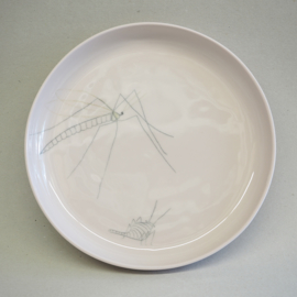 Plate Insect | L | Pink