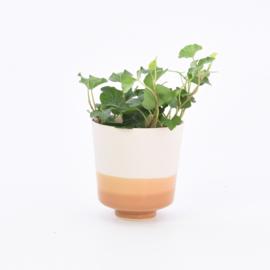 Dip   Plant   S   Nude 041