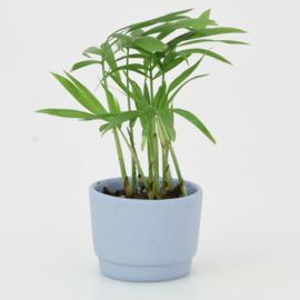 Mini flowerpot - XXS - Blue