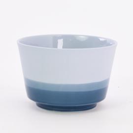 Dip   Plant   L   Blue 065
