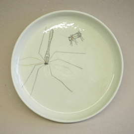 Plate Insect | Breakfast | Mint