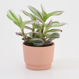 Mini flowerpot - XS - Red