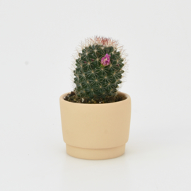 Mini flowerpot - XXS - Orange