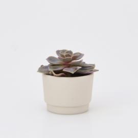 Mini flowerpot - XXS - Nude