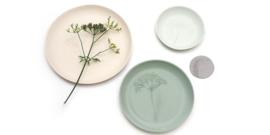 Plant stamp plates