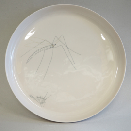 Plate Insect | XXL | Nude