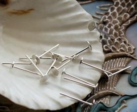 set/20 (= 10 paar) Oorbel Stekers voor Cabochons - Zilver Kleur