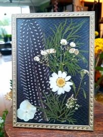 Parelhoender-Veer en Droogbloemen in Vintage lijstje - Zwart Wit