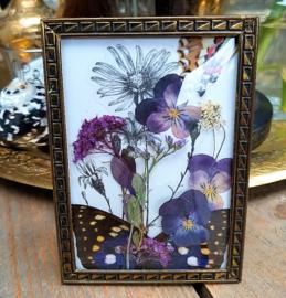 Droogbloemen en Vlindervleugels in Vintage Bol-lijstje
