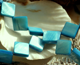 set/5 Kralen: Paarlemoer Schelp - ca 10x10 mm - Aqua Blauw/Turquoise