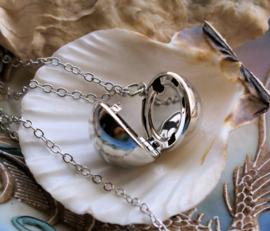 Hanger aan Ketting: Foto of Boodschap Bol Medaillon - Zilver kleur