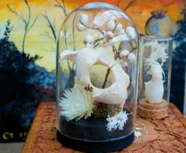 Herten Wervel met droogbloemen in Stolp