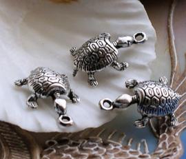1 Bedel: Schildpad - 22x14x7 mm - 3D - Antiek Zilver Kleur