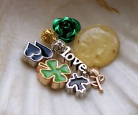 Memory Locket Inhoud (voor variant met glas) - 4-12 mm - Mix 9 Green Love