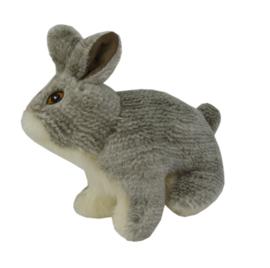 Wild Life Dog Rabbit (Konijn)
