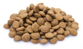 Boefjes & Schatjes Super Premium Junior hondenvoeding