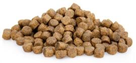 Boefjes & Schatjes Super Premium Zalm en Rijst hondenvoeding