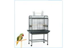 Papegaaienkooi Pionus. Hamerslag zwart