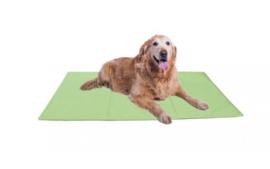 Topmast Gel Koelmat voor honden 65x50cm