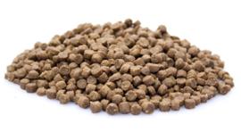 Boefjes & Schatjes Premium Kitten kattenvoeding