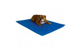 Koelmat Topmast voor Honden 65x50cm