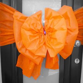 Koninklijk Oranje: strik van oranje PAPIERACHTIG materiaal