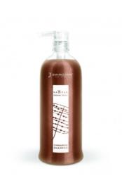 Cinnamon Shampoo - 250 ML