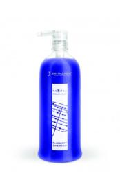 Bleuberry Shampoo - 250 ML