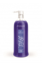 BLEUBERRY ICE SHAMPOO - 250ML