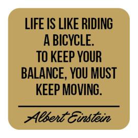 P021 | Albert Einstein - Balance