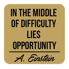 P027 | Albert Einstein - Opportunity