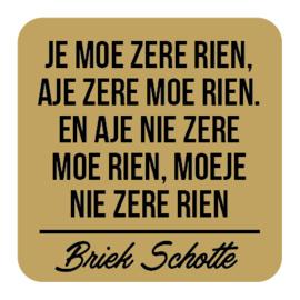 P031 | Briek Schotte - Zere rien