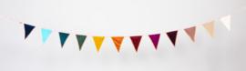 L.A.P Vlaggenlijn - rainbow velvet