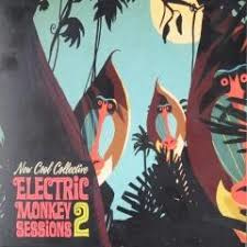 NEW COOL COLLECTIVE - ELECTRIC MONKEYS SESSIONS 2