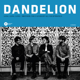 Dandelion - Long, Long, Long (7 inch vinyl)