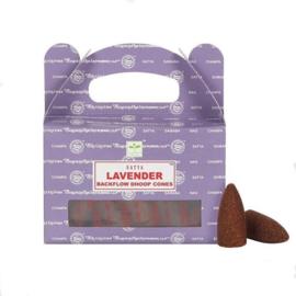 Cones-Wierook kegels Lavender