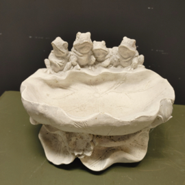 Waterbak beton met kikkers