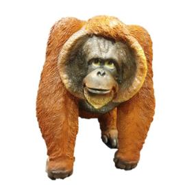 Orang Oetan  beeld staand